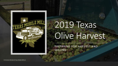 Texas Association of Olive Oil : Education & Resources